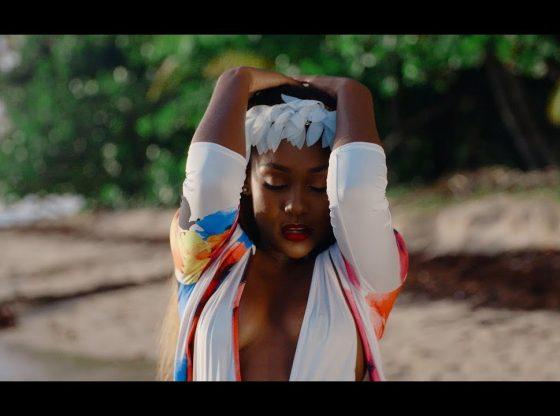 Dancehall In The City Nailah Blackman ft Shenseea Badishh Music Video